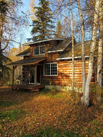 Denali Fireside Cabins & Suites: photo0.jpg