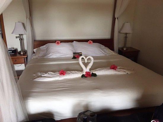 Belizean Dreams Resort: We were greeted with beautiful towel designs each day!