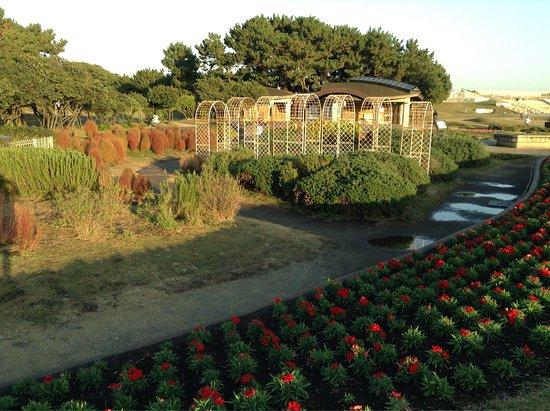 Tsujido Kaihin Park