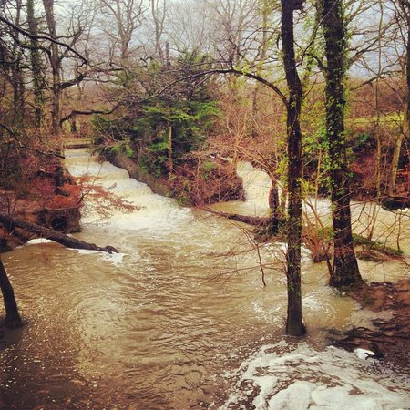Burgess Hill, UK: Both waterfalls flowing and stream bursting its banks after heavy rainfall - beautiful walks!