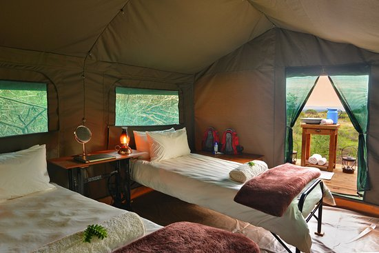 Shamwari Game Reserve Lodges: Shamwari Explorer Camp