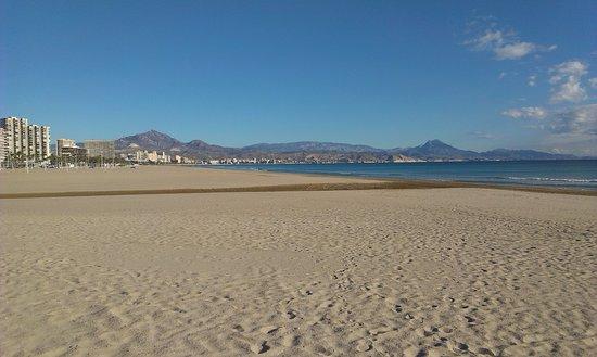 Playa de San Juan: widok na El Campello