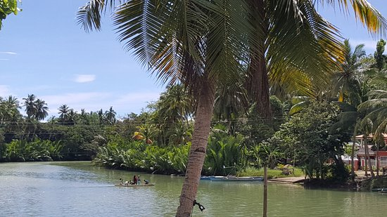Loboc River Resort: 20161119_120020_large.jpg