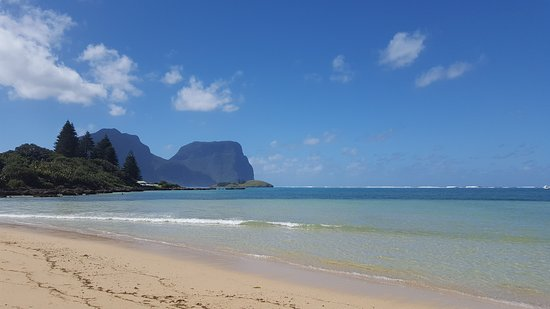 Arajilla Retreat - Lord Howe Island: 20161107_092957_large.jpg