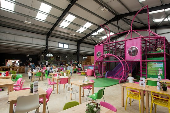 The Pink Pig Farm