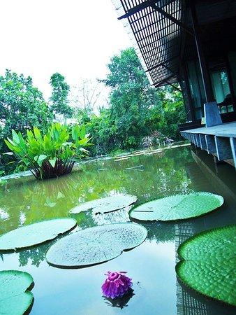 blue thai massage na thai massage