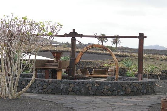 San Bartolome, España: Pressoir à vigne