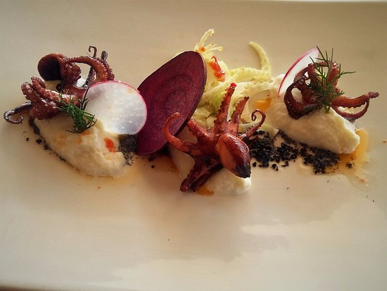Gordon's Bay, Zuid-Afrika: Chef's Inspiration starter - Braised Baby Octopus with cauliflower puree and fennel and chili sa