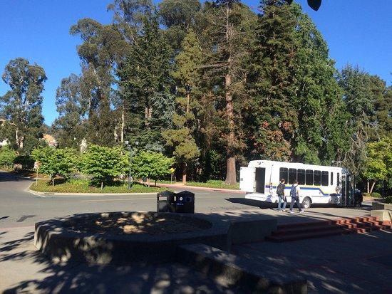 University of California, Berkeley: The school bus