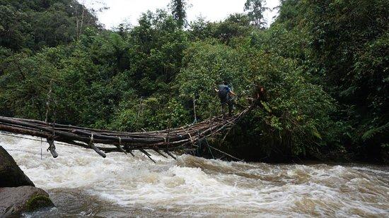 Tembagapura, Indonesia: crossing river also jungle trekking