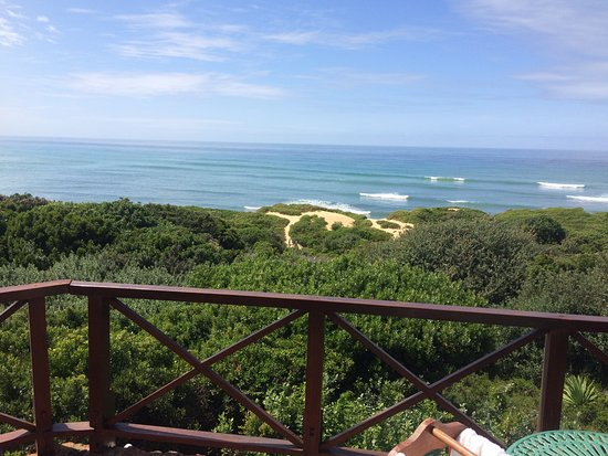 Port Alfred Picture