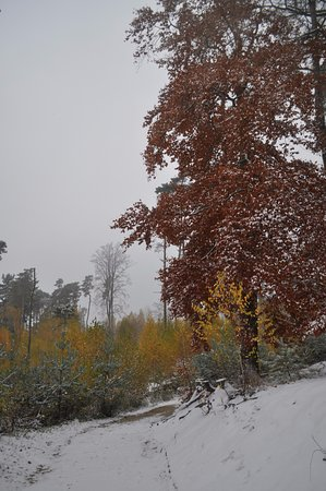 Jicín, República Checa: Праховские скалы в несезон