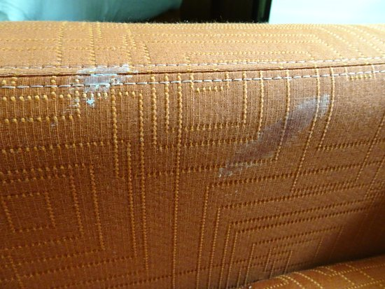 Benton, AR: stains on sofa