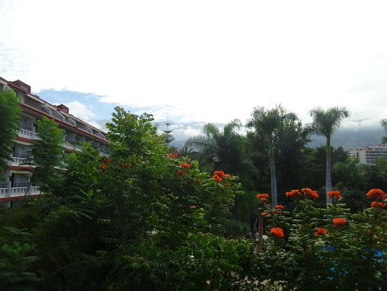 Masaru Apartments: Vistas desde nuestra habitación