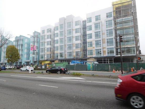 Shattuck Avenue Photo