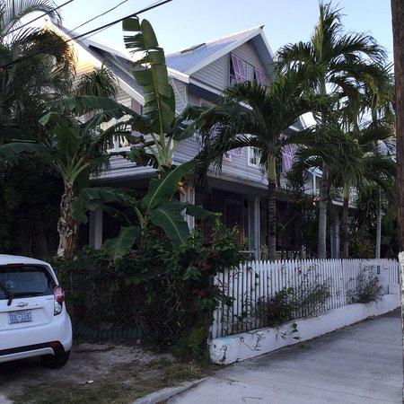 Artist House on Fleming: photo4.jpg