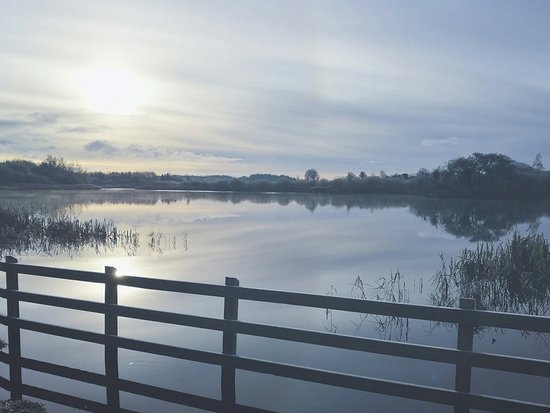 Claremorris, Ιρλανδία: McMahon/Clare Lake Park