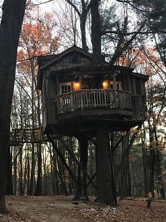 Glenmont, OH: The Mohican treehouses are amazing. We stayed at the Old Pine Treehouse.  I literally wasn't rea