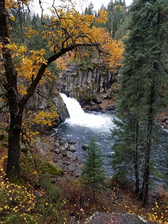 Shasta-Trinity National Forest: The Lower Falls