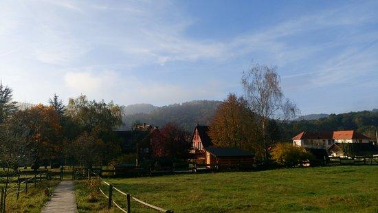Obersteinbach, France: Massif des Vosges du Nord