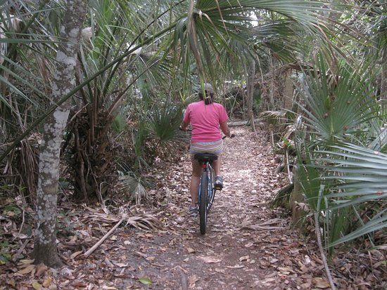 Fernandina Beach, FL: Get off the road and explore the side paths