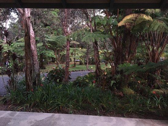 Kilauea Lodge: Common room and grounds