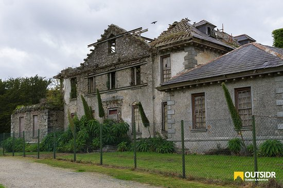 County Wicklow, Irlanda: The Ruins of Kilmacurragh House