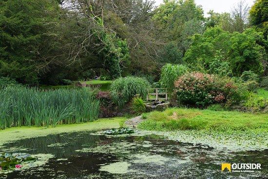County Wicklow, Ireland: Lake