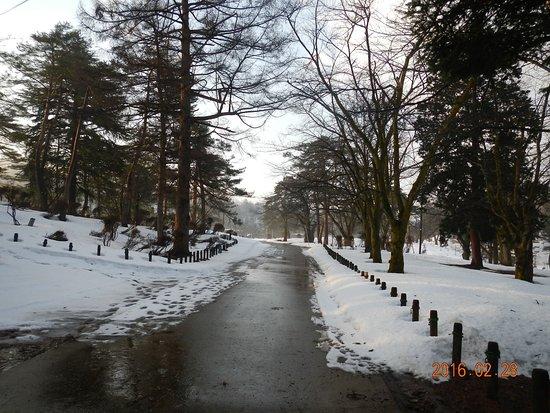 Yukyuzan Park : 雪の日の朝もいいですね。