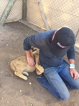 Vanderbijlpark, Sudáfrica: Lion und Safaripark (2 Stunden fahrt)