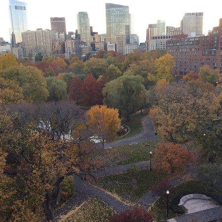 Taj Boston: Quarto com vista ao Parque Boston Common
