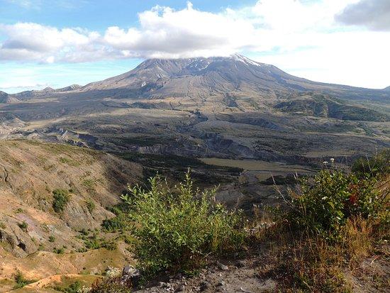 Toutle, WA: Mt. St. Helens