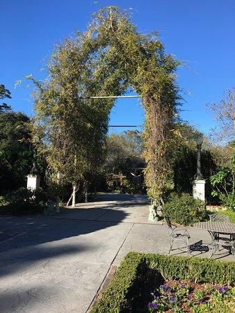 Darrow, LA: photo9.jpg