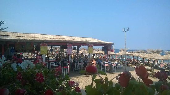 Golden Sands, Bulgaria: Ballermann 6 Beach Bar am Goldstrand in Bulgarien