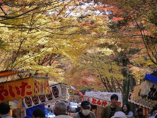 Oyada Shrine: photo2.jpg