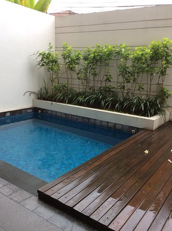 Private Plunge pool - Picture of The Magani Hotel and Spa ...