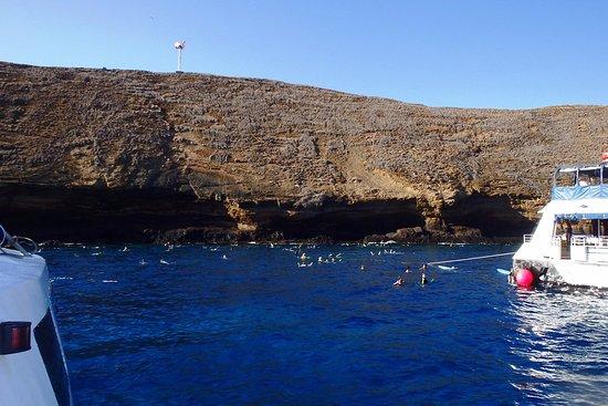 Maalaea, Гавайи: Snorkeling at Molokini Crater