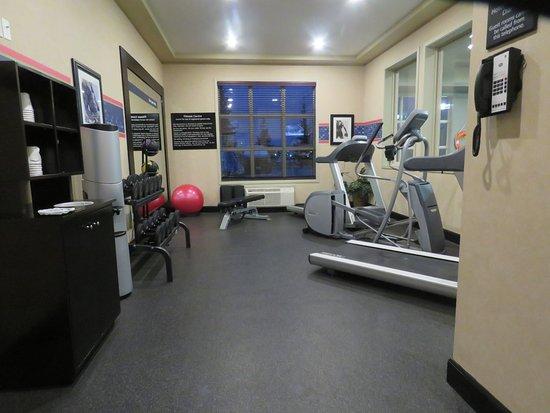 Hampton Inn & Suites Edmonton International Airport: Workout room