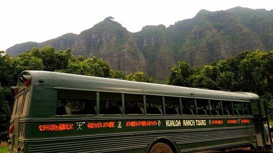 Kaneohe, Hawaje: our tour bus