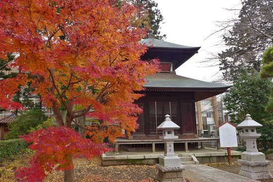 Gionji Temple