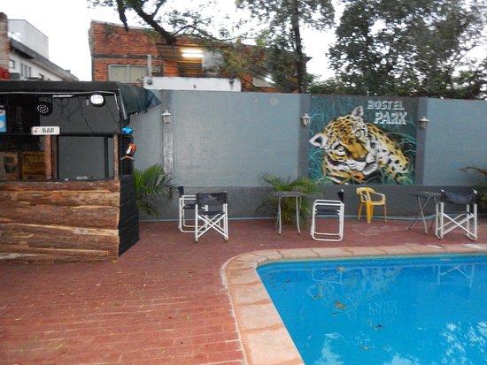 Hostel Park Iguazu: Piscina y mural del hostel.