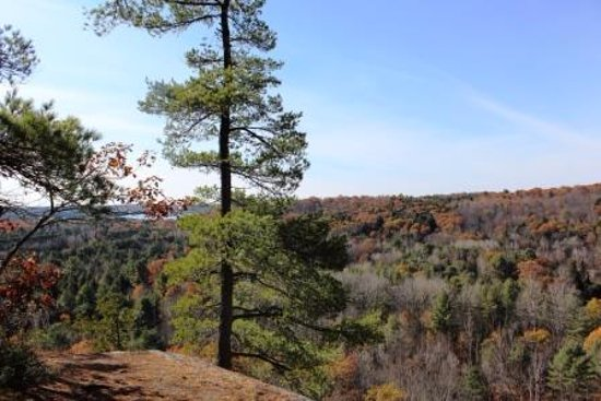 Algonquin Highlands, Canada: View from a trail behind the property