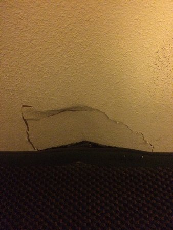 Wingate by Wyndham Dallas Love Field: The wall in my room. Not nice.