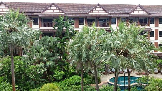 卡他棕櫚度假村照片