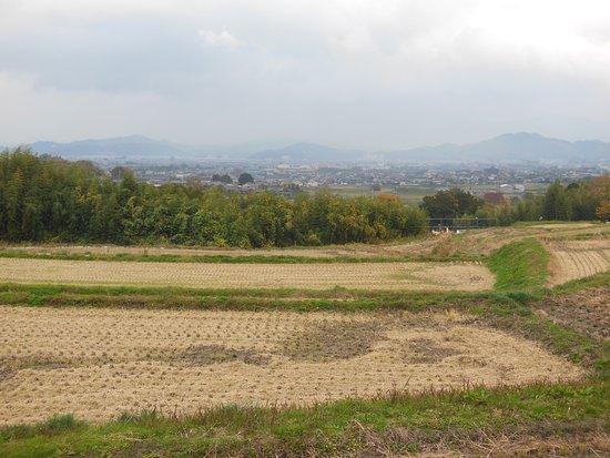 Katsuragi Road