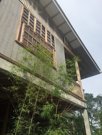 The Flying Fish Hostel