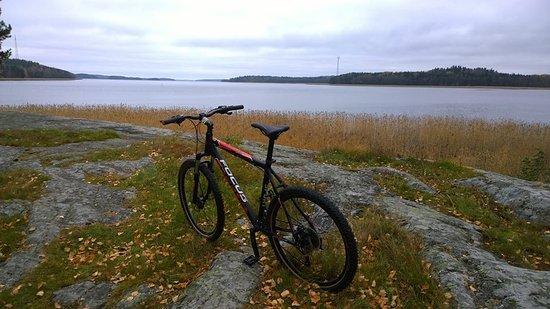 Porvoo, Finland: Our Focus Whistler mtn bikes