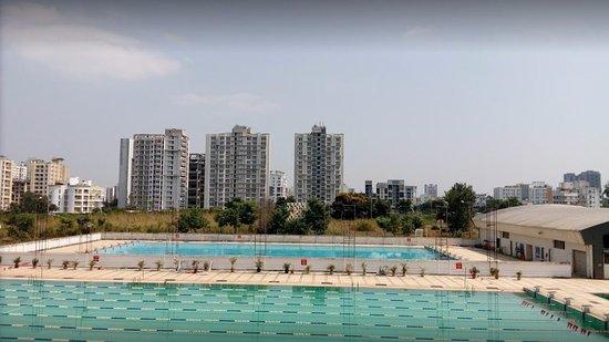 50 m swimming track pool and general pool picture of balewadi stadium shri shiv chhatrapati