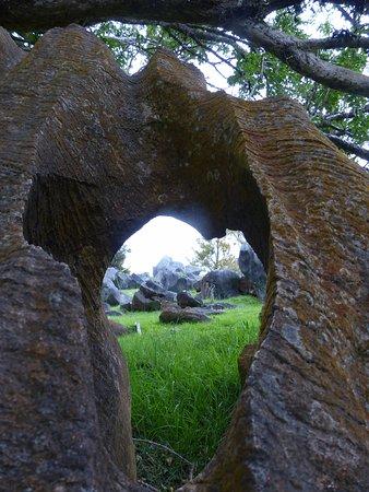 Whangarei, New Zealand: Rock Garden Feature