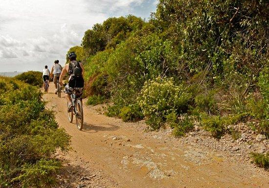 Mountain Biking Jeffreys Bay
